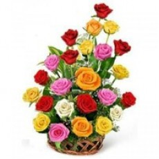 24 Multicolour Roses Basket