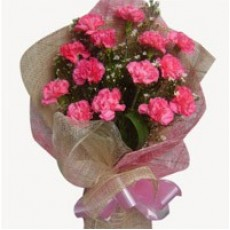 24 Pink Carnations