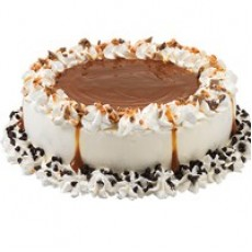 ICECREAM CAKES