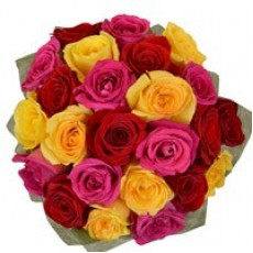Multicolour Roses - Handbunch