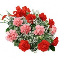 Red & Pink Carnations