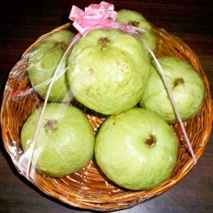 Basket of  Guava